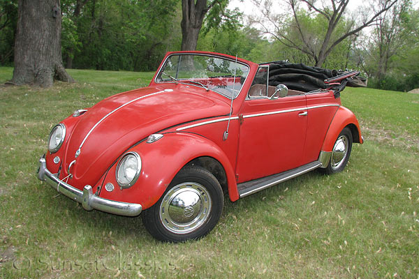 vw beetle. VW Beetles for sale.