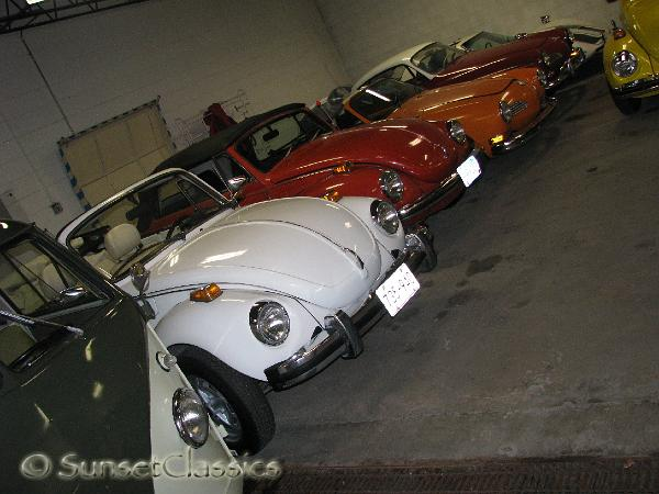purple vw beetle for sale. green volkswagen beetle for